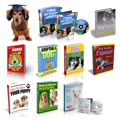 Product picture Package of 10 important DOGS ebooks - with PLR and MRR